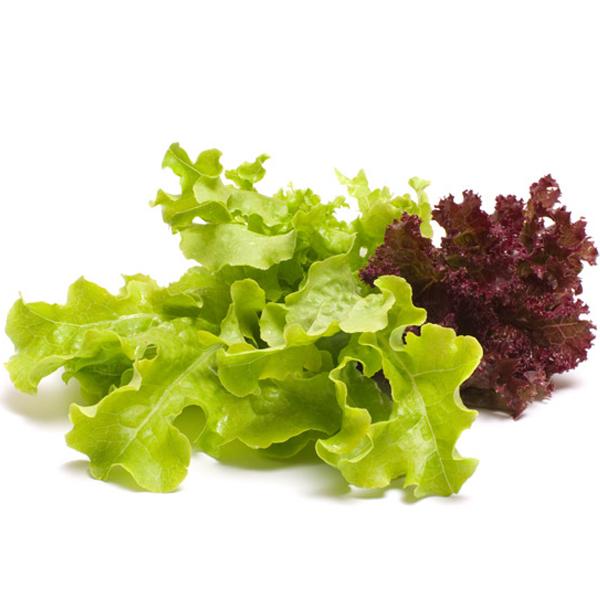 купить салат